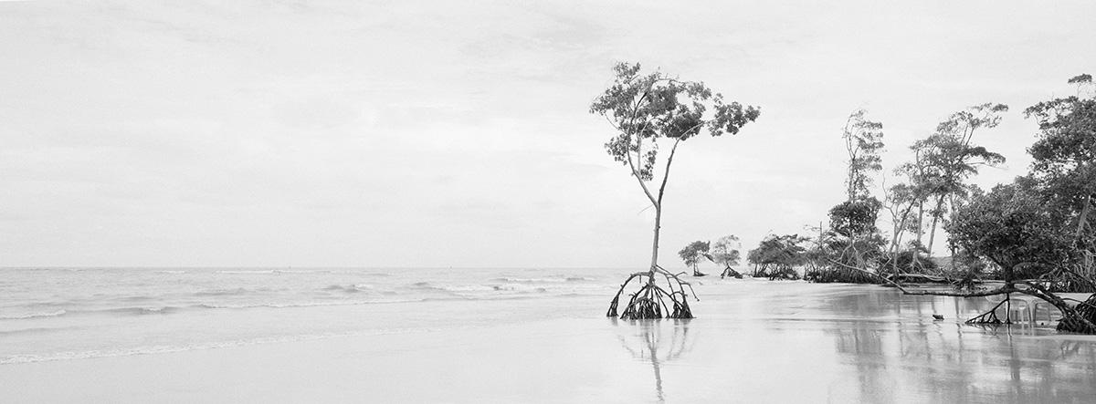 Ilha de Marajo, Brasilien